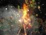 Verbrennung 2009