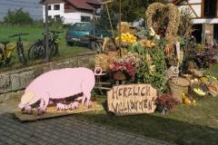 Sichelhenke 2009