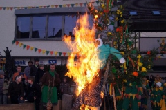 Verbrennung 2011